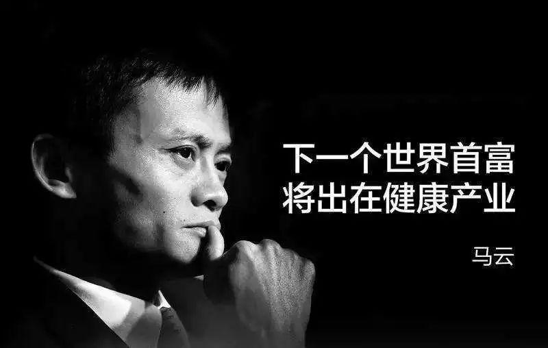 马云认可的小众爆赚项目,落地执行可年入百万!
